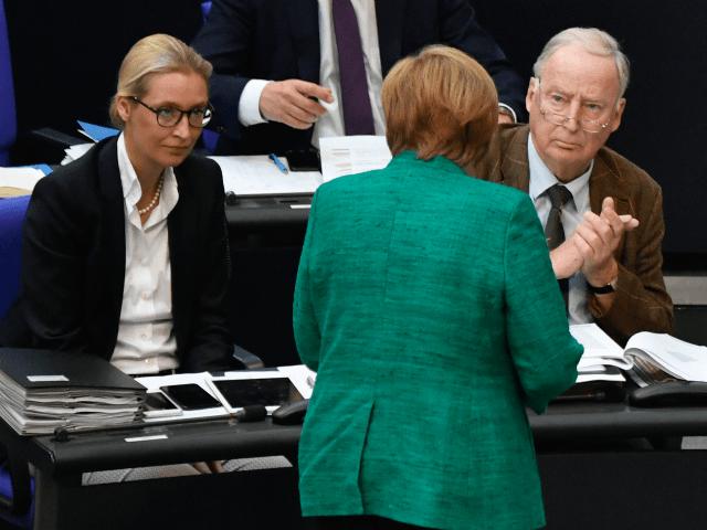 Německá vláda nasadí nad populistickou stranou AfD dohled